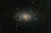 Dreiecksgalaxie M33 by Christian Dahm