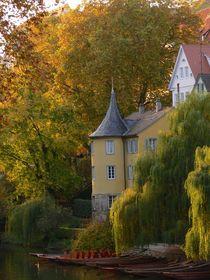 Tübingen, Hölderlinturm im Herbst von Klaus-Peter Huschka