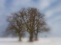 Trio im Schnee by Klaus-Peter Huschka
