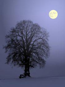 Mondnacht von Klaus-Peter Huschka