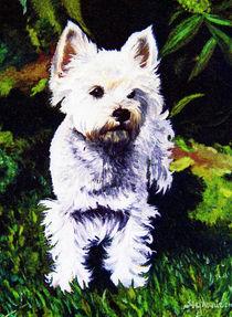 Tilly von Stephanie Blodau