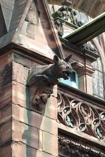 Gargoyle in Straßburg von safaribears