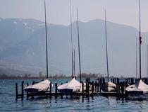 Lago di Caldaro von Evita Knospina