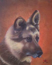 Schäferhund Jäcky von pjb-art