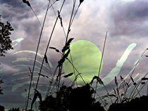 Mondschein von Peter Norden
