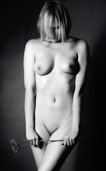 Akt Poster - Tule luokseni  von Falko Follert