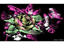 the shape of a rose von Robert Ekblom