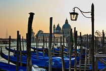 Venice Late Day Sun by Ian C Whitworth