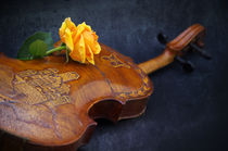 El violín by AD DESIGN Photo + PhotoArt