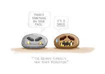 The Grumpy Furball's New Year's Resolution by Yunyeen Yong