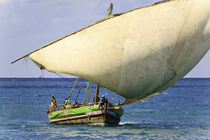 Dhow sailing 10 by Leandro Bistolfi