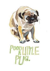 Poor Little Pug von Holly Exley