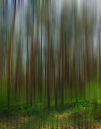 Geisterwald by lolly