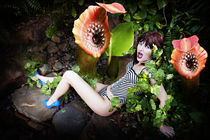Carnivourous plants by myphotography