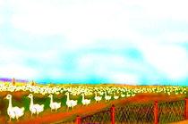 BioGaense by reniertpuah
