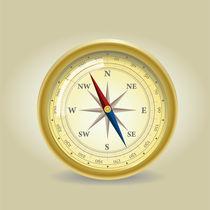 Golden compass von Jasmina Stanojevic