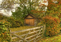 Autumn-shed