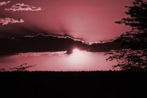 romantic african sunsets von james smit