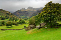 Great Langdale, Cumbria, England by Craig Joiner
