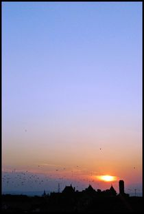 Sunset von Daniela Grigoret
