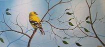 Springtime Blues von John Venske
