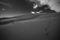extraterrestrial by Bram Soete
