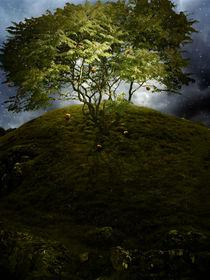 Magic Tree by Kuba Skorkowski