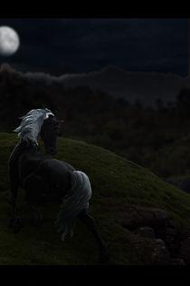 Horse-wieksze