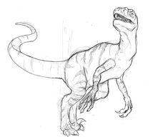 Raptor by patator