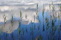 Am Seeufer - Schweden von Peter Bergmann