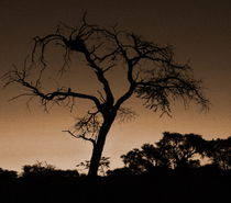 Sundown-namibia-1-2-1