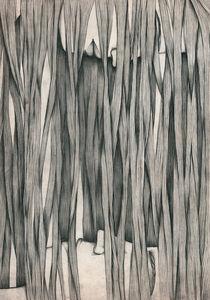 The Curtain von Anastasia Dachko