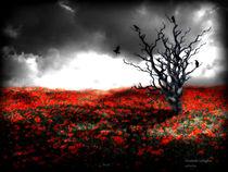 Death and Life Winter and Summer  von Elizabeth Gallagher