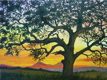 Eiche im Sonnenuntergang von Jürg Meyerholz