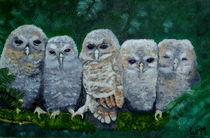Young owls von Wendy Mitchell