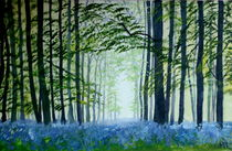 Bluebell wood von Wendy Mitchell
