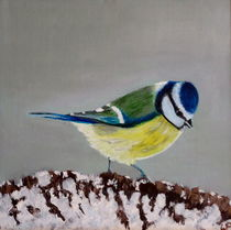 Blue tit in the snow by Wendy Mitchell