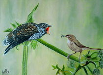Cuckoo by Wendy Mitchell