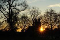 Kölner Dom und Rheinpark bei Sonnenuntergang von Frank Rother