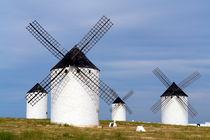 La Mancha, Heimat von Don Quijote von Frank Rother