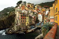 Riomaggiore in Bella Italia by Frank Rother