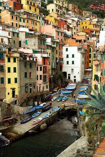 Riomaggiore, Italia by Frank Rother