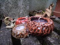 Sea Urchins von Jenna Wylie