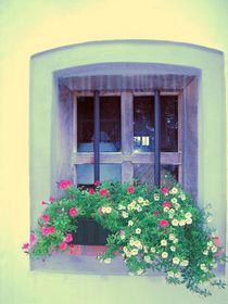 Fenster mit Blumen von Henriette Abt