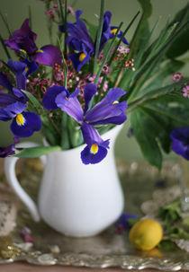 Iris von Inna Merkish