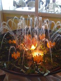 Orange Fountain von Jenna Wylie