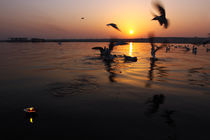 Flight of Delight-7, Varanasi, India by Soumen Nath