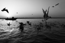 Flight of Delight-1, Varanasi, India von Soumen Nath