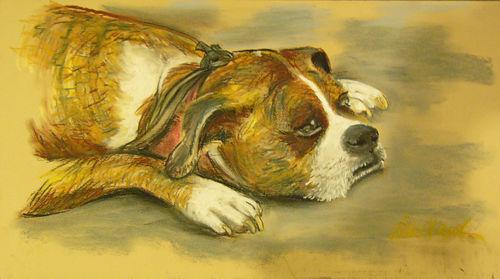 Sunday-arts-fair-dog-in-a-mood