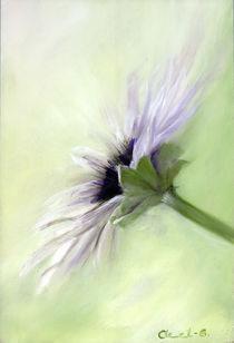 Zauber einer Blüte von Ingrid Clement-Grimmer